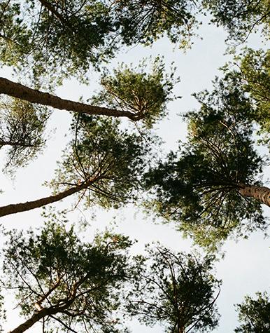 Agriturismo B&B Tre di Spade Parco naturale